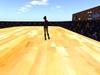 Roller rink 001