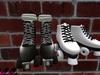 Skates 001