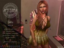 Artizana - Ijalu (Gold) - Mesh Dress
