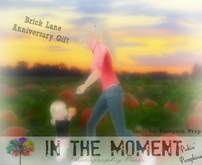 .In The Moment.Families. ~ Pickin' Pumpkins ~ Dollarbie