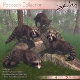 JIAN :: Raccoon Collection