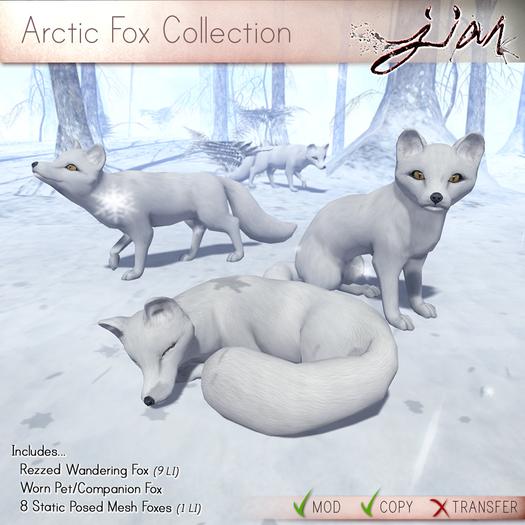 JIAN :: Arctic Fox Collection