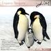 JIAN :: Emperor Penguins