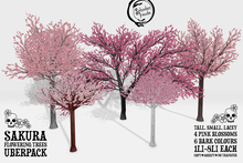 Schadenfreude Sakura Flowering Trees Uberpack