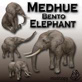Medhue Elephant - Bento