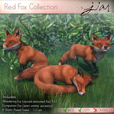 JIAN :: Red Fox Collection