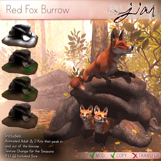 JIAN :: Red Fox Burrow