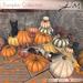 JIAN :: Pumpkin Collection w/ Kitten