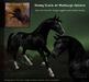 Teegle Texture Pack - Showy Black - Texture Barn
