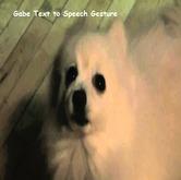 Gabe Text to speech Gesture