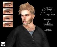 Male Eyebrows 5 V2