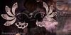 +XAnSA+ Steampunk Wings - Brown
