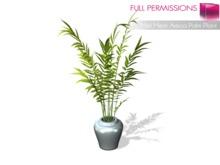Full Perm Mesh Areca Palm Plant 1LI