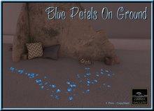 Zinner Gallery - Blue Petals on Ground