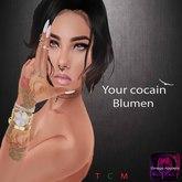 Your cocain :: Blumen