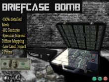 *CRAnQ* Mesh Money Briefcase Bomb