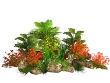 MSD - Tropical Barrier Garden - Naga (15 LI) C/M