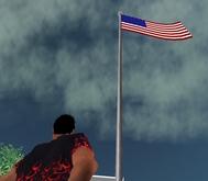 American Flag - Flexi