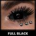 Mesh Eyes [Full Black] (Fantasy) [With HUD]