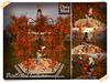 Mistlestoe autumn 2