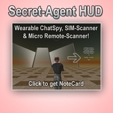 Secret-Agent HUD, by Thomas Conover