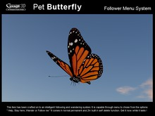 Gaagii - Pet Butterfly --- Following Pet System
