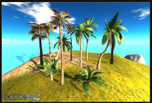 PACK PALM & TEXTURE - Copy - Mod