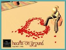 Zinner Gallery - Hearts On Ground