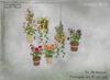 -DRD- Garden House - Flowerpots