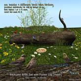-Hanaya- Backyard Birds Set with Forest Log [mesh]