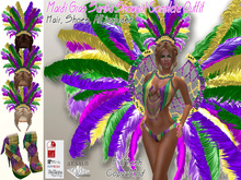 Mardi Gras Samba Complet Outfit - FitMesh - Hair and Shoes -F