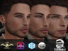 .::CDC Beard 46 Tintable Sig/Catwa/Omega Appliers ***