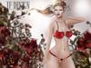 "JF Design ""Cordia"" [Maitreya/Belleza] Panties - Red"