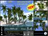 3D PALMS CocoNuts