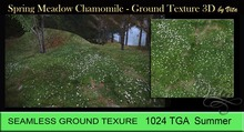 Vita's Textures-SPRING MEADOW CHAMOMILE 3D Seamless 1024 2017