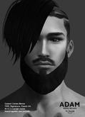 /Mr.Ronnie/ mesh beard Adam DEMO TMP Catwa Signature