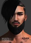 /Mr.Ronnie/ mesh beard Adam Fatpack TMP Catwa Signature