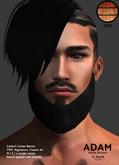 /Mr.Ronnie/ mesh beard Adam Red TMP Catwa Signature
