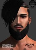 /Mr.Ronnie/ mesh beard Adam Black TMP Catwa Signature