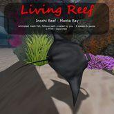 Inochi Reef : Mesh Fish - Manta Ray