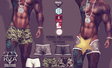 R2A  BOXER SHORTS FATPACK