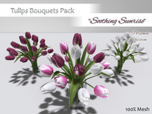 """*ALUORA* Tulips Bouquet """"Soothing Sunrise"""" - Personal Edition"""
