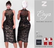 Enya pencil dress - Ornate net /Maitreya/Belleza/SLink/eBody