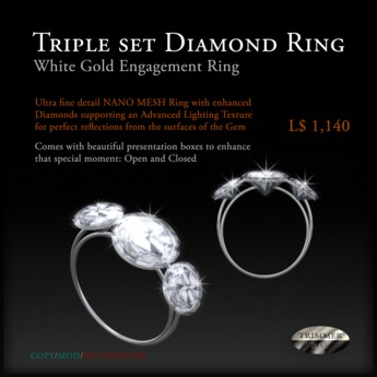 Engagement Ring of Triple Set Diamonds in White Gold by Trimmer Bay