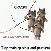 Tiny Inc. tiny training whip and gestures