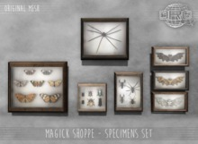 -DRD- Magick Shoppe - Specimens Set