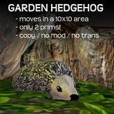 Garden Hedgehog .:SHD:.