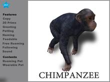 [TomatoPark] Chimpanzee Mesh ( Rezz + Wear)