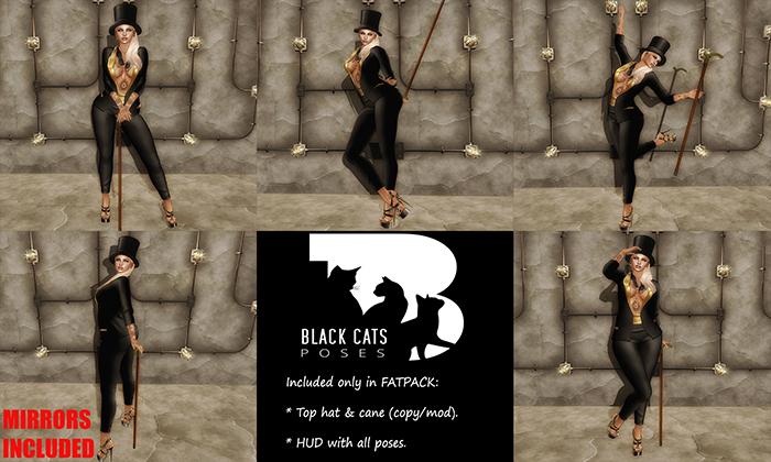 BLACK CAT Wallerposen Reflex Pose