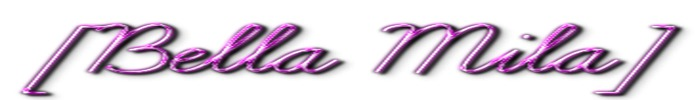 Bella logo 3